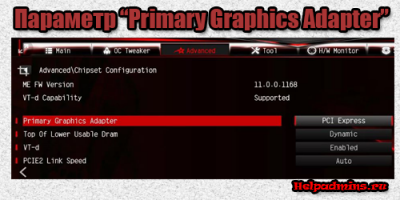 что такое Primary Graphics Adapter