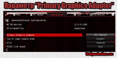 что такое Primary Graphics Adapter