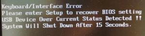 Please enter setup to recover bios setting