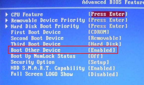 Try Other Boot Device в bios