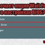 за что отвечает Wait For F1 if Error в BIOS